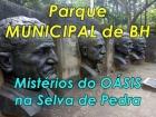 VÍDEO: Conheça o Parque Municipal, um OÁSIS no meio da Selva de Pedra. Só árvores são 280 espécies