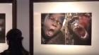 Museu acusado de RACISMO ap?s expor fotos de africanos comparados a animais.