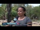Cemit?rio de animais recebe visitas e homenagens no dia de finados! Jazigo custa R$ 300