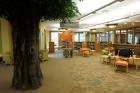 Que tal você, adulto, ir na Biblioteca para COLORIR? Ou brincar de FORTE com suas crianças? Conheça essa e outras atividades da Biblioteca de Baxter, na Inglaterra
