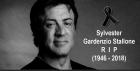 Sylvester Stallone desmente boato: ´Por favor, ignorem essa idiotice... ´, Está vivo, bem, feliz e saudável... ´E ainda socando!´